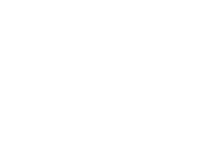 Sasser Law Office